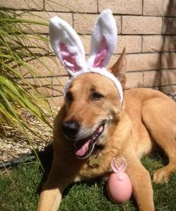 Easter Jack Outside